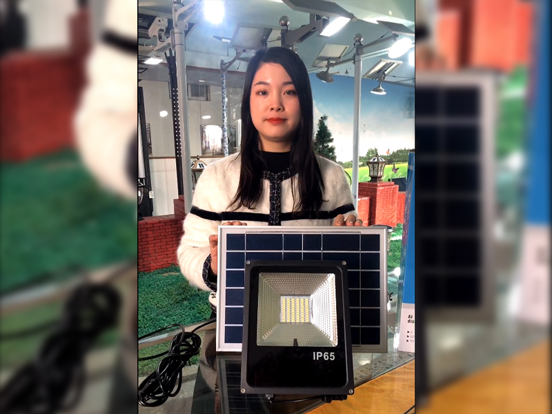 60W High Brightness Solar Flood Light with 5m Cable
